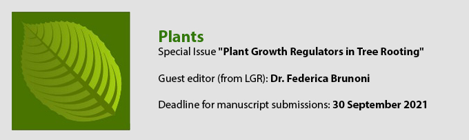 Plants: Special Issue